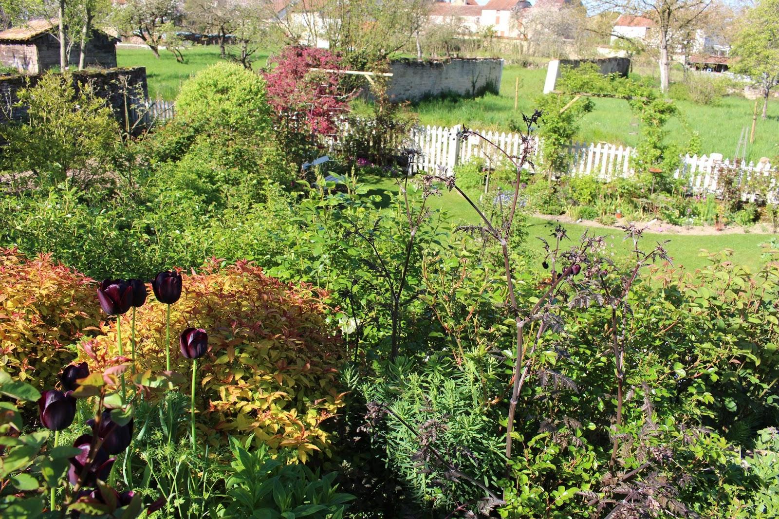 Notre jardin secret le joli mois de mai for Jardin secret wine