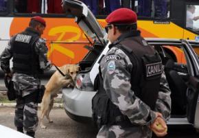PM da Paraíba recebe treinamento para usar cães em buscas a suspeitos em matas