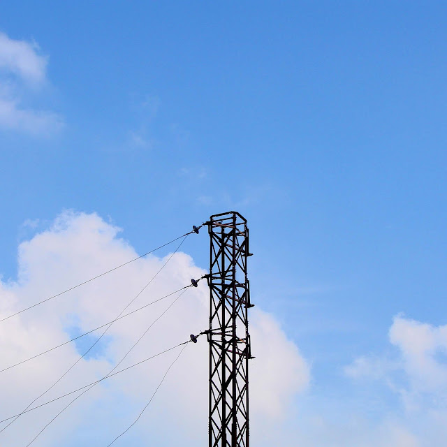 electrcity pylon minimalist india countryside