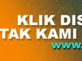 Rahasia Sawit Hemat Pupuk Makro dan Hasil Naik Hampir 100% | Pupuk Kelapa Sawit Organik