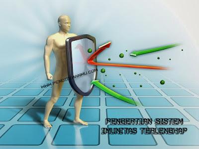 Pengertian Sistem Imunitas Terlengkap