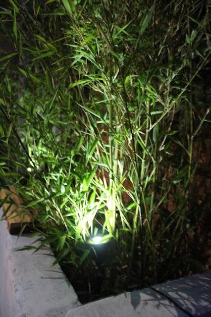 garden spotlight under bamboo