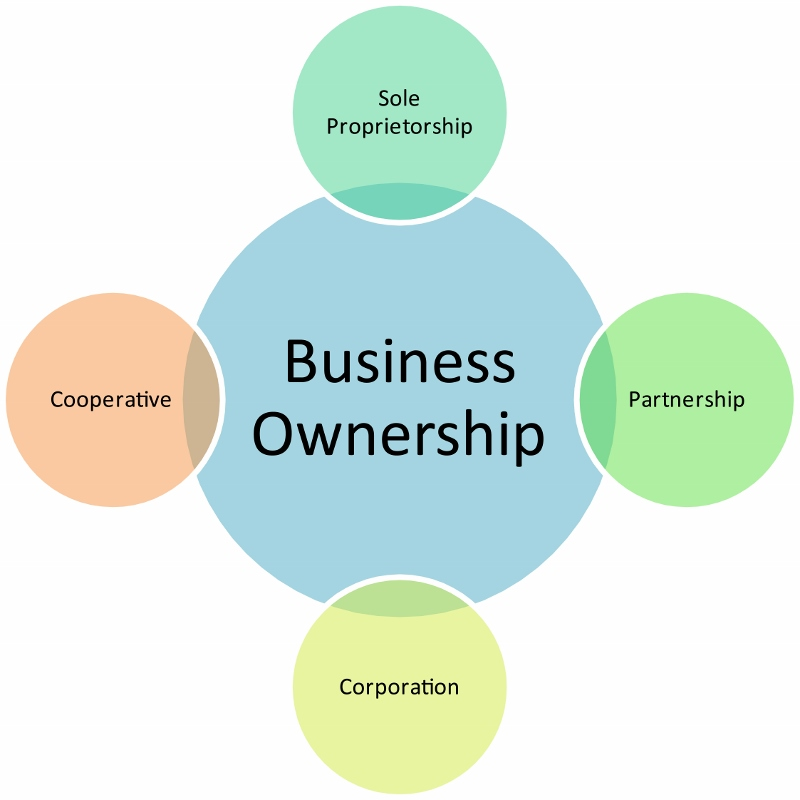 sole proprietorship a sole proprietorship is owned by only one person essay Sole proprietorship essay sample the whole doc is available only for registered users open doc 7 convenience/burden  sole proprietorships are very convenient and easy to start up since there are no governing there is some added liability since there is more than one person involved.