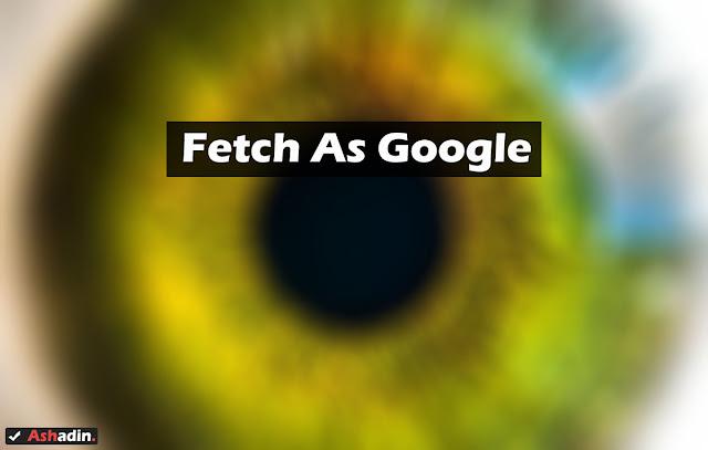 Keuntungan menggunakan fitur Fetch as Google untuk mempercepat Index dan Crawl Blog