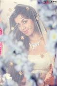Nikki Galrani glamorous Portfolio-thumbnail-7