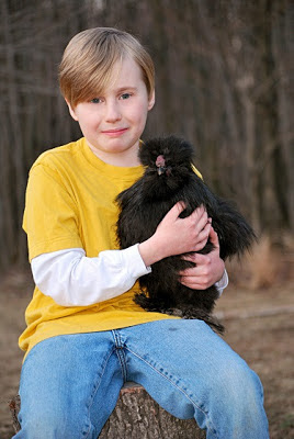 Black silkie, chickens are funny