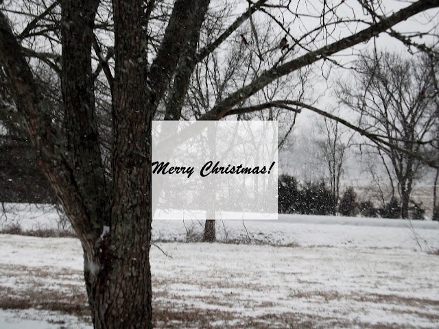 Merry Christmas from middle Tennessee!