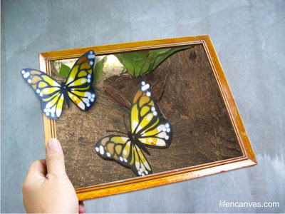 butterfly handmade framed