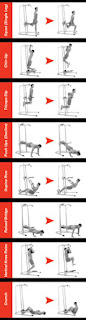 Bowflex Body Tower, workout placard, with 8 key exercises illustrated