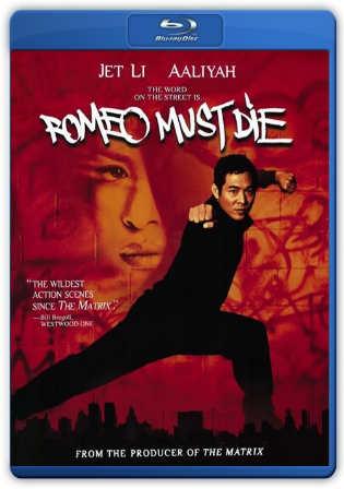 Romeo Must Die 2000 BRRip 900Mb Hindi Dual Audio 720p Watch Online Full Movie Download bolly4u