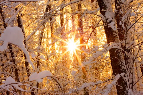 Oh, By The Way...: Sun And Snow