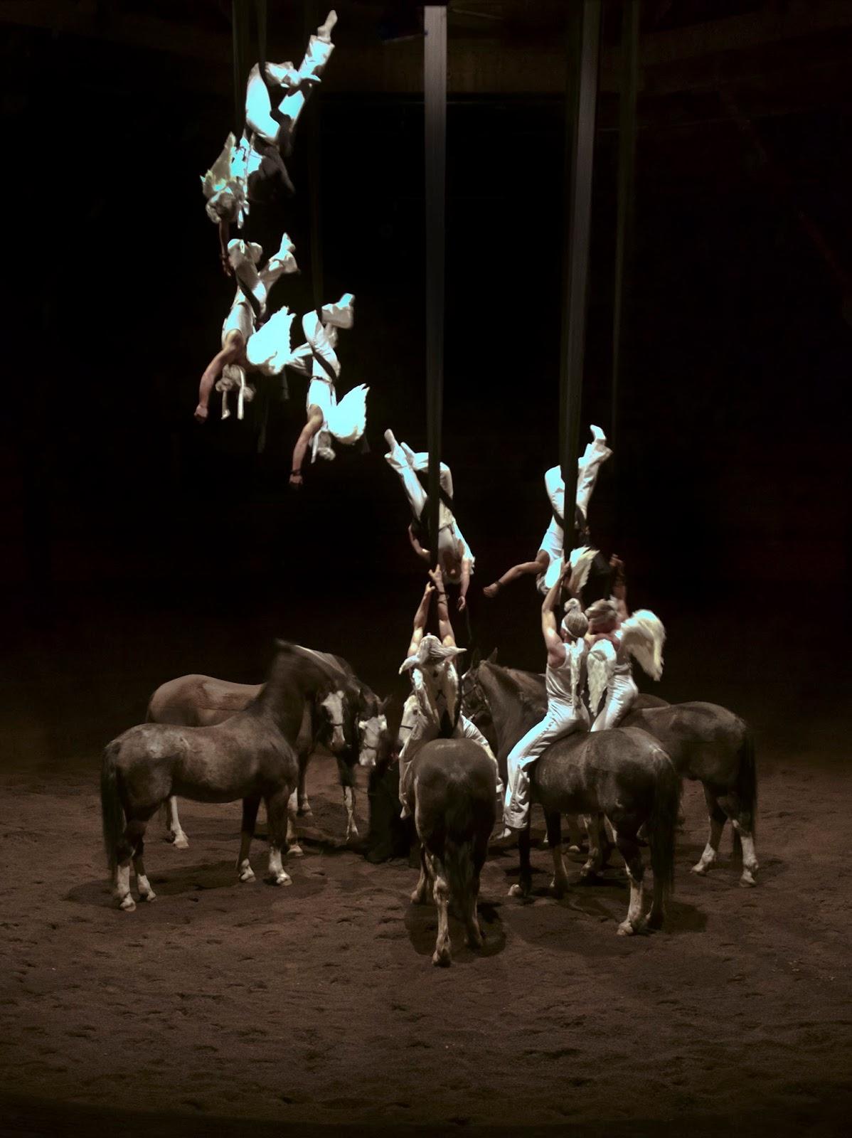cirque zingaro aubervilliers