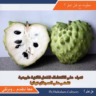 تعرف  على اكتشاف  القرن المذهل فاكهة طبيعية  تقضى على السرطان نهائيا
