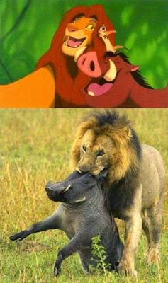 Expectativa vs Realidad: amistad de animales