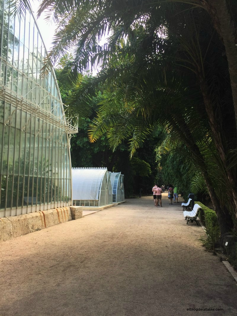 Jardín Botánico de Valencia