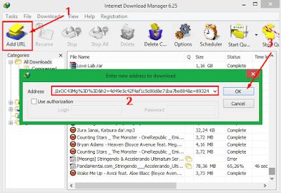 Cara Ampuh Mengatasi IDM Tidak Bisa Download File 13
