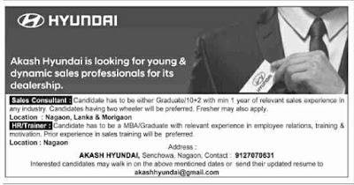 Akash Hyundai Nagaon Job Vacancies in Sales Consultant and HR/Trainer Posts