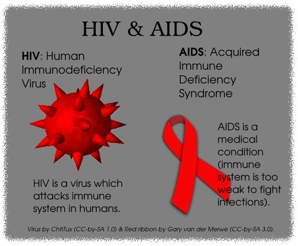 whats the difference between aids and hiv