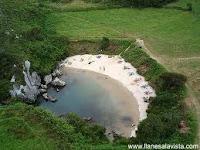 Una playa en medio de un prado