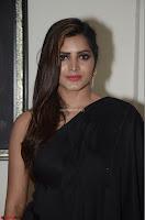 Pavani Reddy in Black Saree Sleeveless Choli ~  Exclusive 08.JPG