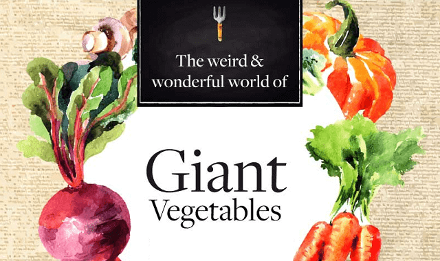 The Weird and Wonderful World Of Giant Vegetables