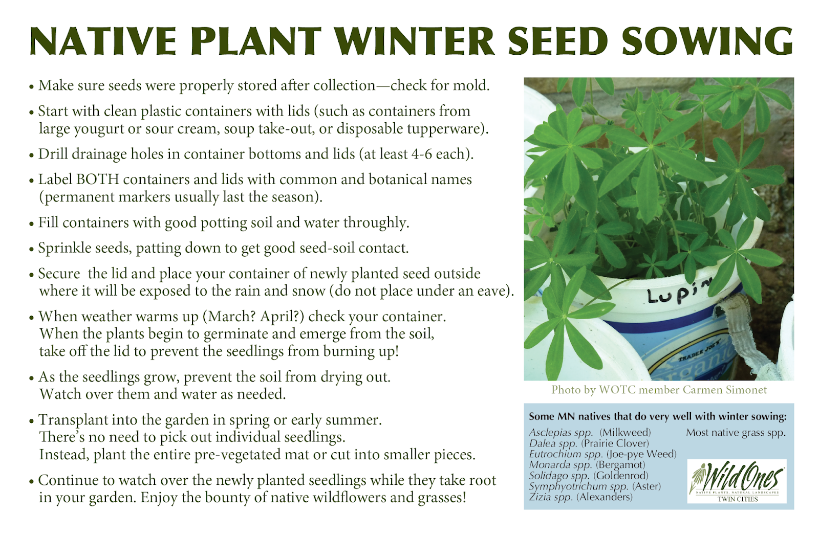 Click Here For A Printable Pdf On Native Plant Winter Seed Sowing