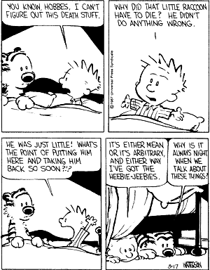 You know Hobbes, I can't figure out this death stuff.  Why did that little raccoon have to die?  He didn't do anything wrong.  He was just little!  Whats the point of putting him here and taking him back so soon?!?  It's either mean or it's arbitrary, and either way I've got the heebie-jeebies.  Why is it always night when we talk about these things?