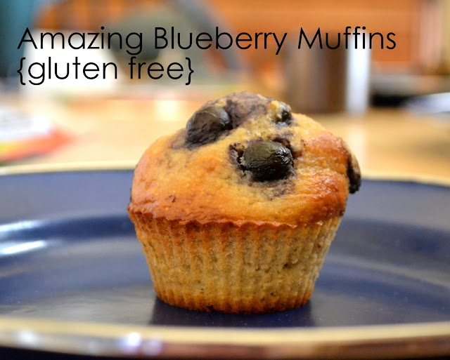 ThriceTheSpice: Amazing Blueberry Muffins {gluten free} - photo#6