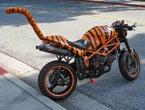 Moto creativa de Tiger