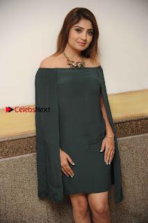 Kannada Actress Karunya Ram Stills in Strapless Green Short Dress at Eradu Kanasu Movie Press Meet  0009.jpg