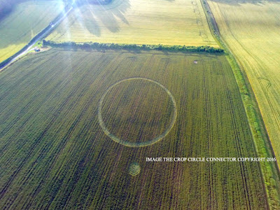 Northfields, near Twyford, Hampshire. Reported 11th July. crop circles 2016