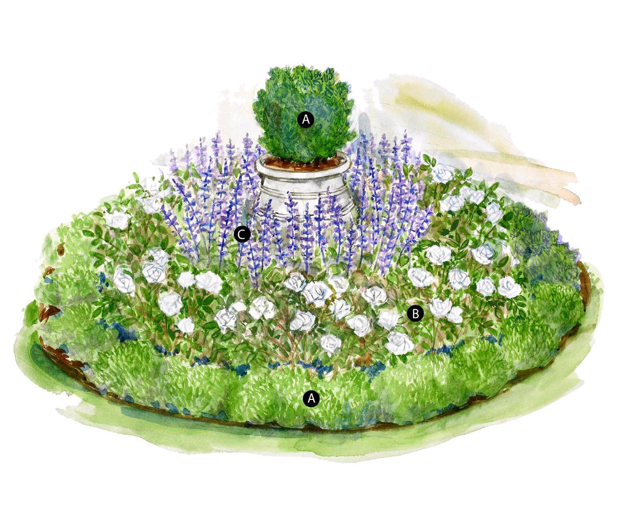 boxwood terrace  small garden inspiration