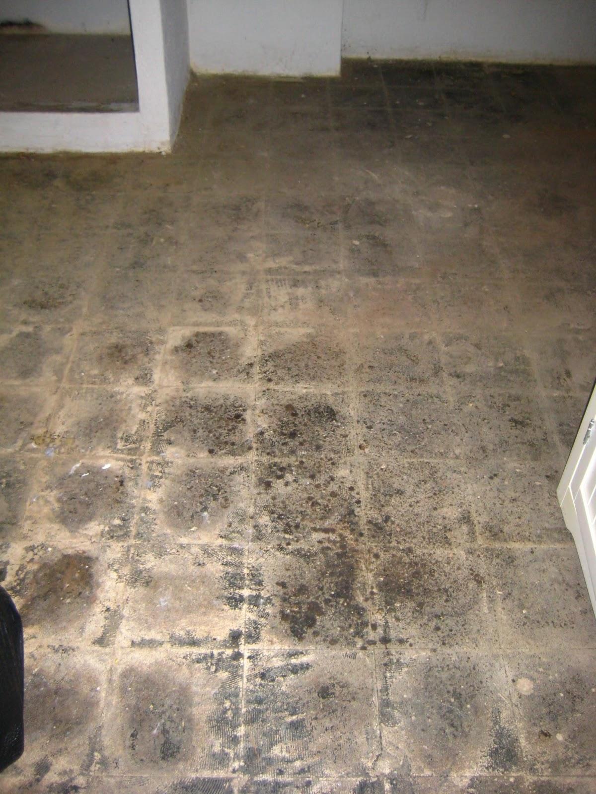 OTown Diary Concrete Floor Paint