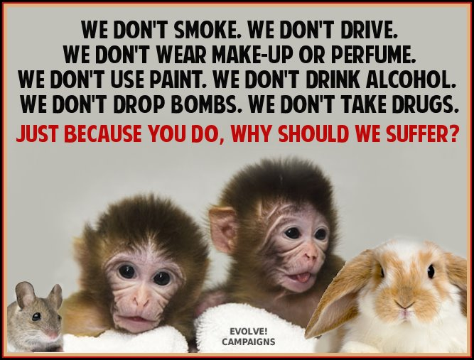 Why are animals used in testing products?