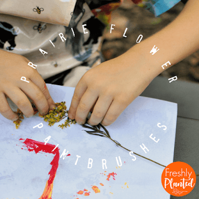 "A fun nature craft inspired by Tomie dePaola's book, ""The Legend of the Indian Paintbrush."" Easy to set up and great for all ages!"