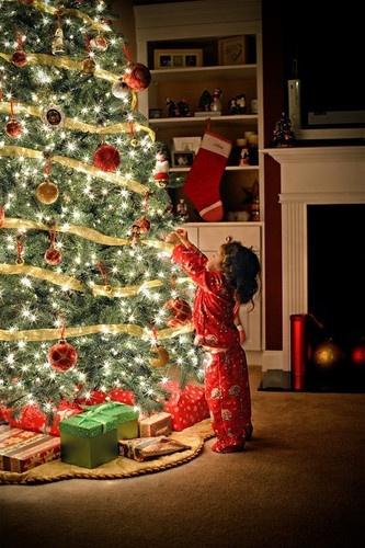 Christmas Light Bulb Tester