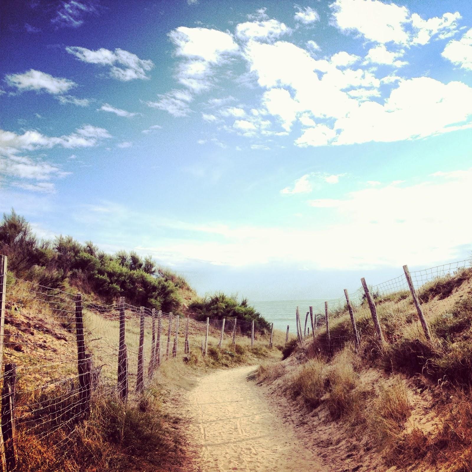 photo de dune (la cote sauvage) accès direct à la mer