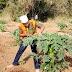 Mbunge wa Mlalo: ''Lamuhimu kuhakikisha sisi tunabaki kuwa kama ndugu''.
