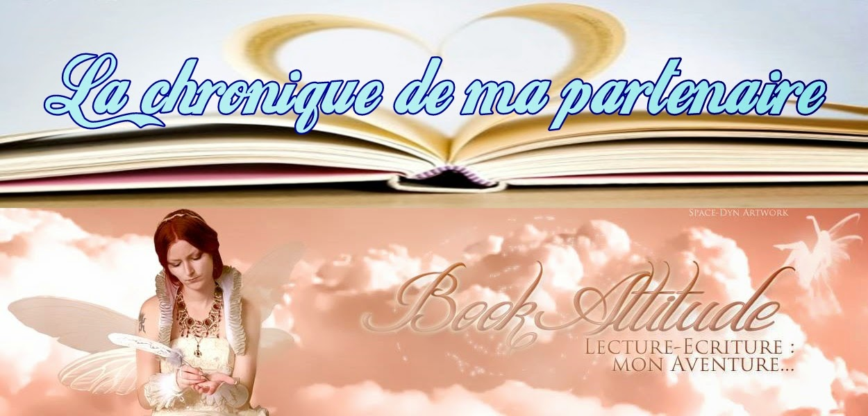 http://book-attitude.eklablog.fr/damanta-tome-1-les-erreurs-de-l-innocence-de-celine-guffroy-a112783144