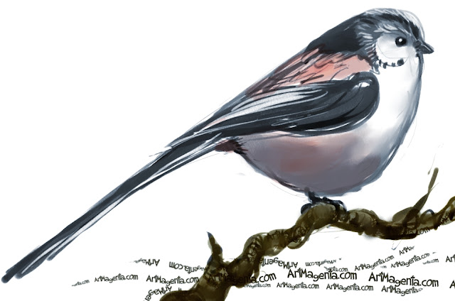 Long-tailed Tit is a bird painting by Artmagenta