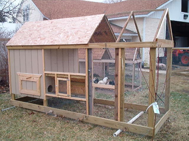Chicken House Plans Chicken Coop Building Mistakes