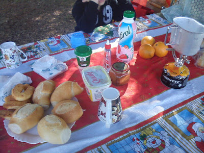 acamparepreciso.blogspot.com.br
