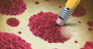 Το φρούτο που εξοντώνει τα καρκινικά κύτταρα