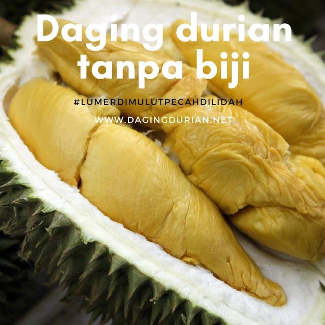 reseller-daging-durian-medan-yang-tiada-duanya-di-muara-aman