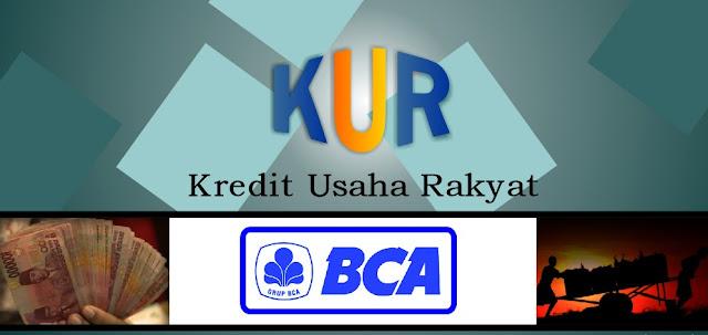 kur-bca-2017