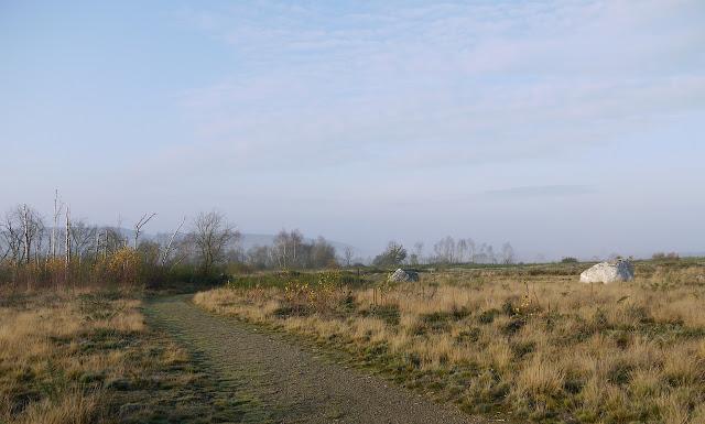 La lande de Cojoux culmine sur une ligne de crêtes, des Alignements du moulin à l'étang du Val.