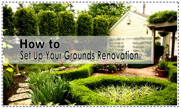 How to Set Up Your Grounds Renovation