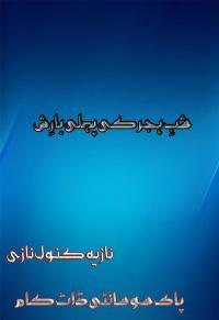 Shab E Hijar Ki Pehli Barish Urdu Novel By Nazis Kanwal