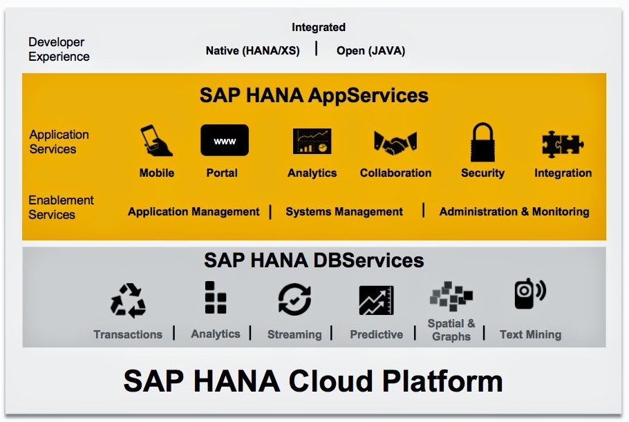 Can SAP hold his position for another decade? An integrated