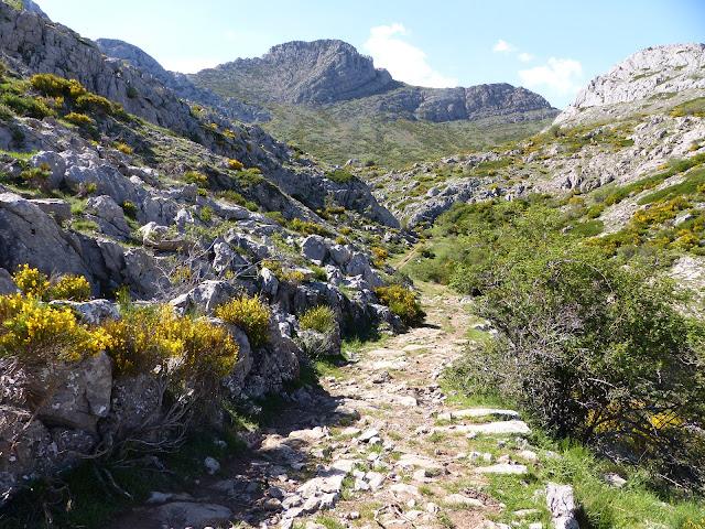 Camino a Peña Rionda